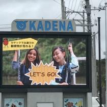 観光プロモーション動画や映像を沖縄で制作する会社