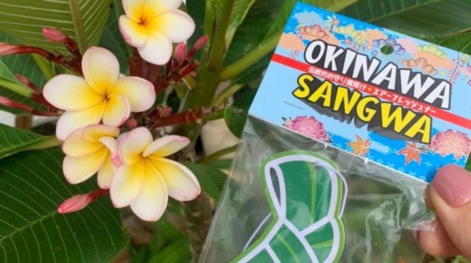 沖縄の動画やオシャレな映像を制作しクリエイティブな事業展開